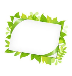 Green Leafs And Blank Gift Tag vector