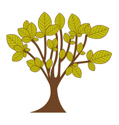 Green leafy tree with trunk nature icon vector
