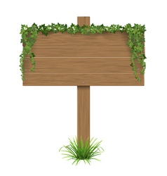 wooden sign ivy grass vector image