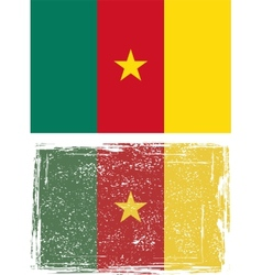 Cameroonian grunge flag vector image vector image