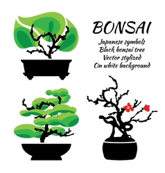 Bonsai set on a white background vector