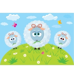 Cartoon lambs vector