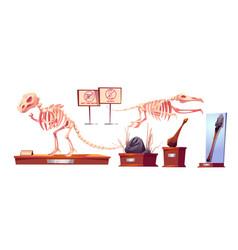 Dinosaur fossils in history museum dino skeletons vector