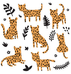 leopard set vector image