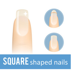 Nail shape square vector