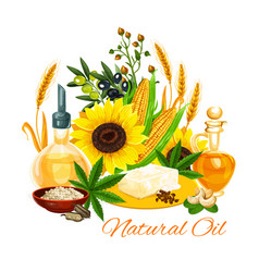 Oil of natural products icon with plants and seeds vector