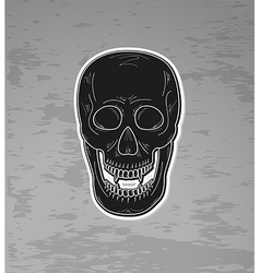 skull with vampire teeth vector image vector image