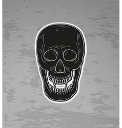 skull with vampire teeth vector image