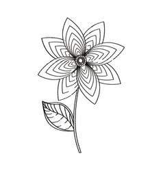 flower decoration garden sketch vector image vector image