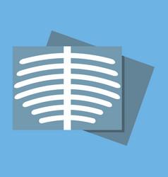 body roentgen icon flat design vector image