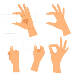 male hand holding blank card set vector image