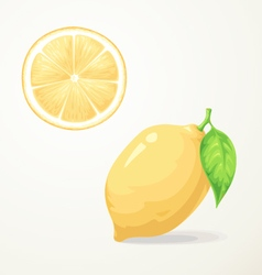 Food Lemon with leave vector image vector image