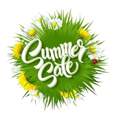 Summer sale lettering background with summer vector image vector image