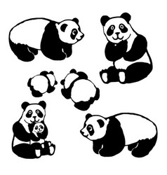 image of a panda bear vector image