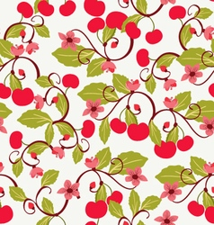 cute background with Cherries and blossom vector image