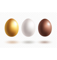 eggs with shadowls vector image