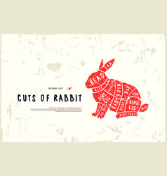 Stock rabbit cuts diagram vector