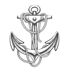 The Anchor vector image