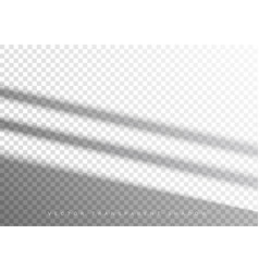 transparent overlay shadow from window vector image
