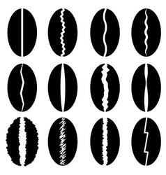 set of different coffee beans silhouettes vector image