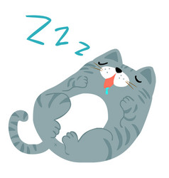 happy fat gray cat sleeping vector image