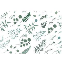 Seamless pattern of eucalyptus palm fern leaves vector