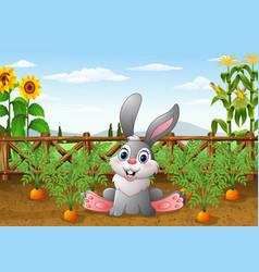cartoon rabbit with carrot plant in the garden vector image