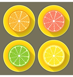 Citrus fruit icons set vector