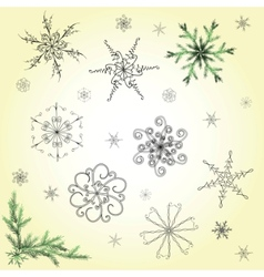 delicate snowflakes vector image