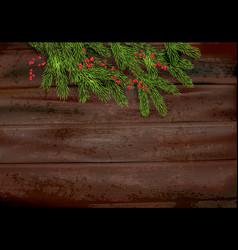 fir tree and berries on dark vector image