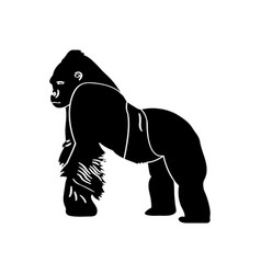 isolated gorilla silhouette vector image