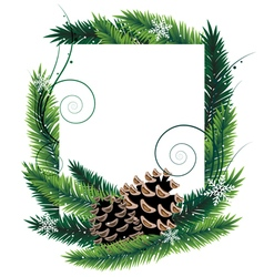 Pine branches and cones vector