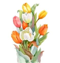 Watercolor Summer Garden Blooming Tulips Flower on vector