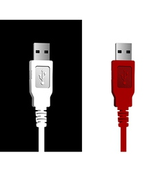 USB wires couple vector image vector image