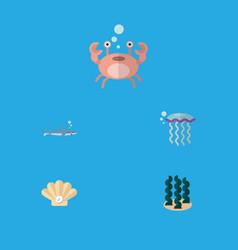 Flat icon marine set of shark alga cancer and vector