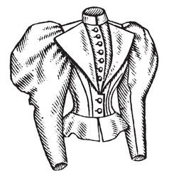 fitted jacket ladys design vintage engraving vector image vector image