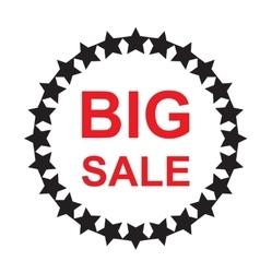 Big sale discound offer vector image