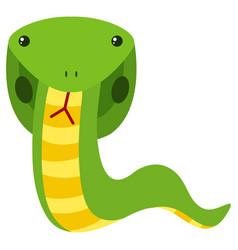 green cobra on white background vector image