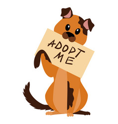 Homeless dog with poster adopt me isolated vector