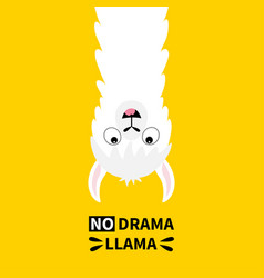 Llama alpaca face hanging upside down no drama vector