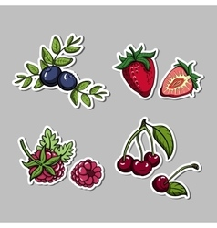 Stickers With Berries Set vector image