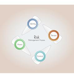 risk management vector image