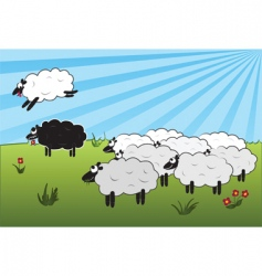 black sheep vector image vector image