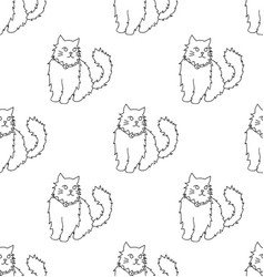 white persian cat on white background vector image