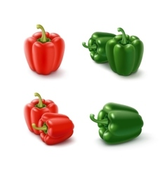 Colored Green and Red Sweet Bell Peppers vector