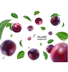 flying purple plums background realistic quality vector image