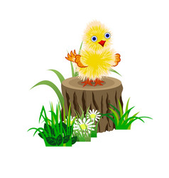 Funny yellow baby chick on a stub in gras vector