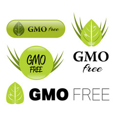 Gmo free sign vector
