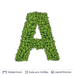 Letter a symbol of green leaves vector