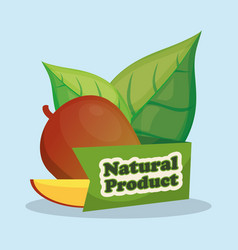 Mango slice natural product design vector
